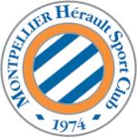 Logo du MHSC